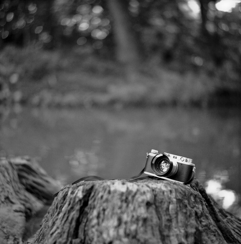 Leica Swirl