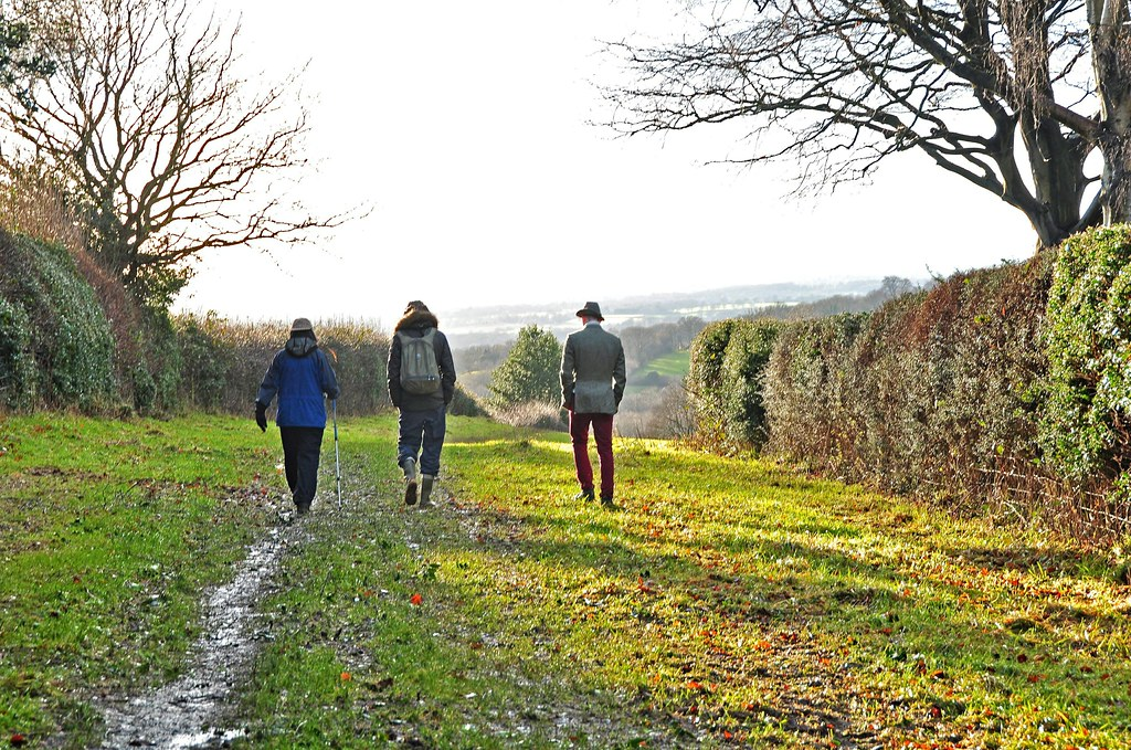 Image result for nature christmas family walking