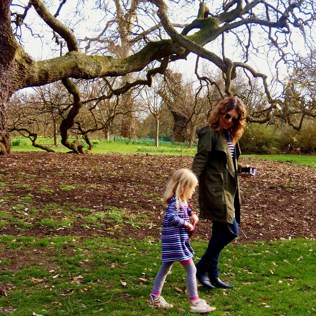 Lucombe Oak - Nilesh & Sangita - First Visit of Kew Garden… | Flickr