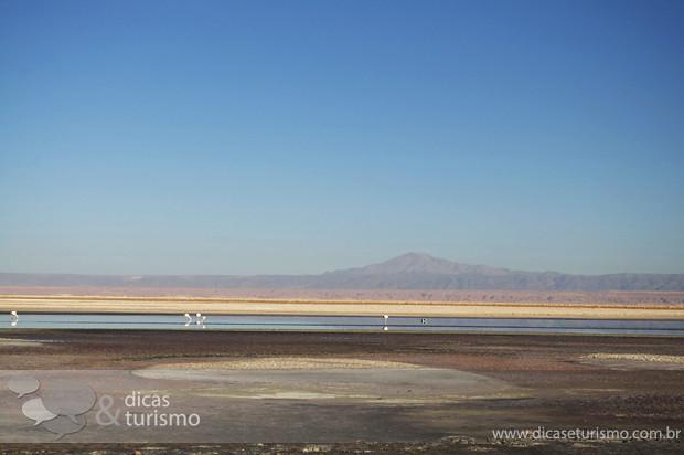 Lagunas Altiplanicas - Atacama