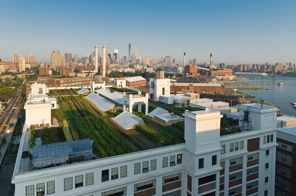 Image result for brooklyn grange