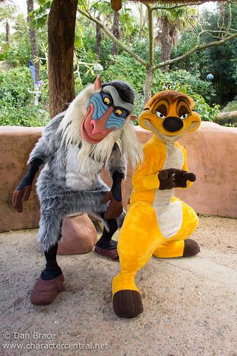 Meeting Rafiki and Timon | Disneyland Paris. February 2014 ...