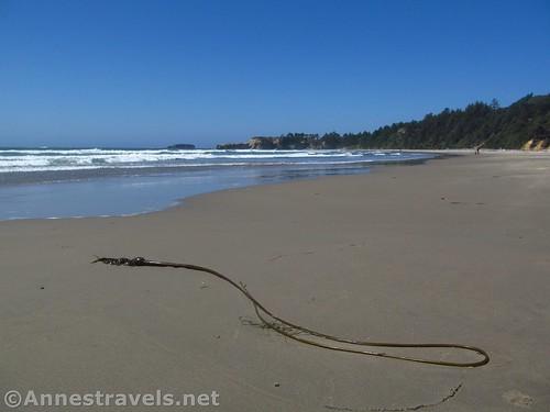 Walking back toward the Punchbowl Headland north of Beverly Beach, Oregon