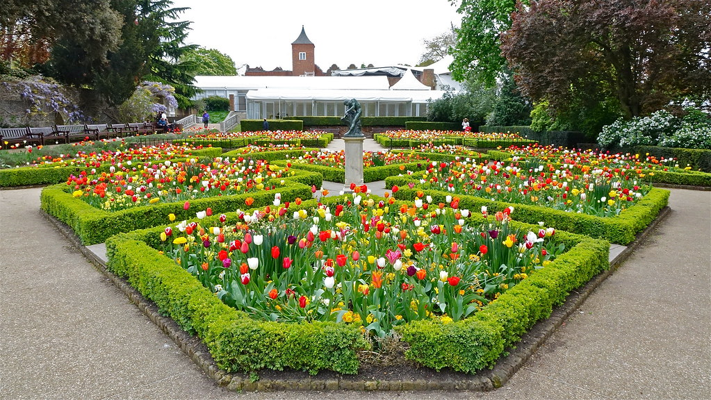 ... Tulips In The Dutch Garden, Holland Park, London, April 2014 | By  Sbally1