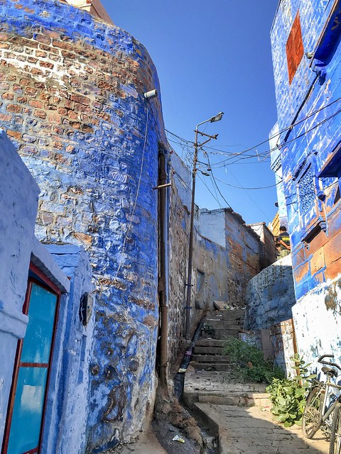 Blue painted houses in an alley of old city, Jodhpur, India ジョードプル 青い壁の民家が続く路地