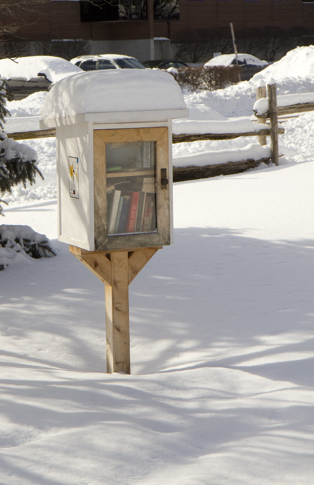 snow covered little library
