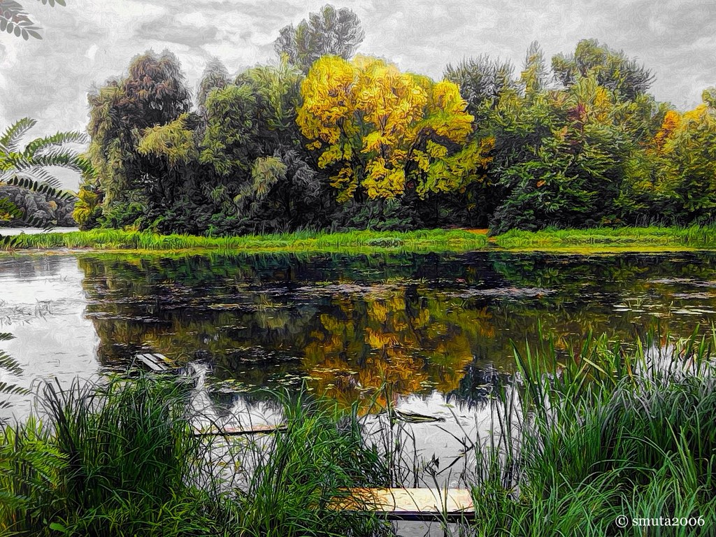 Colors of the Fall | vividHDR Lively, Photogene, Painteresqu… | Flickr
