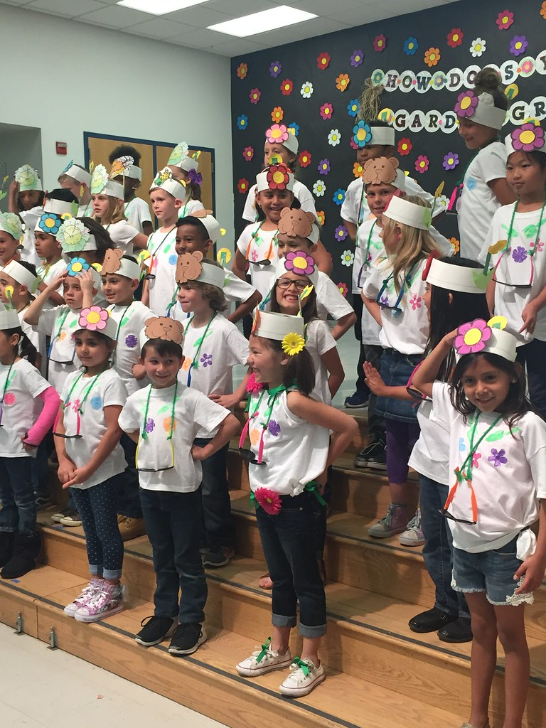 1st grade performance