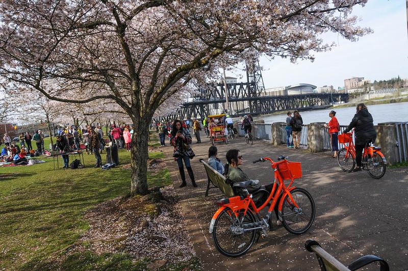 Waterfront Park in spring-18.jpg