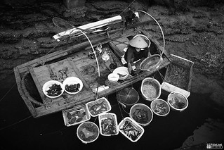 Fish shop in Halong | by Eye - the world through my I