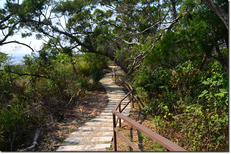 土地公坑諾諾森林登山步道 2