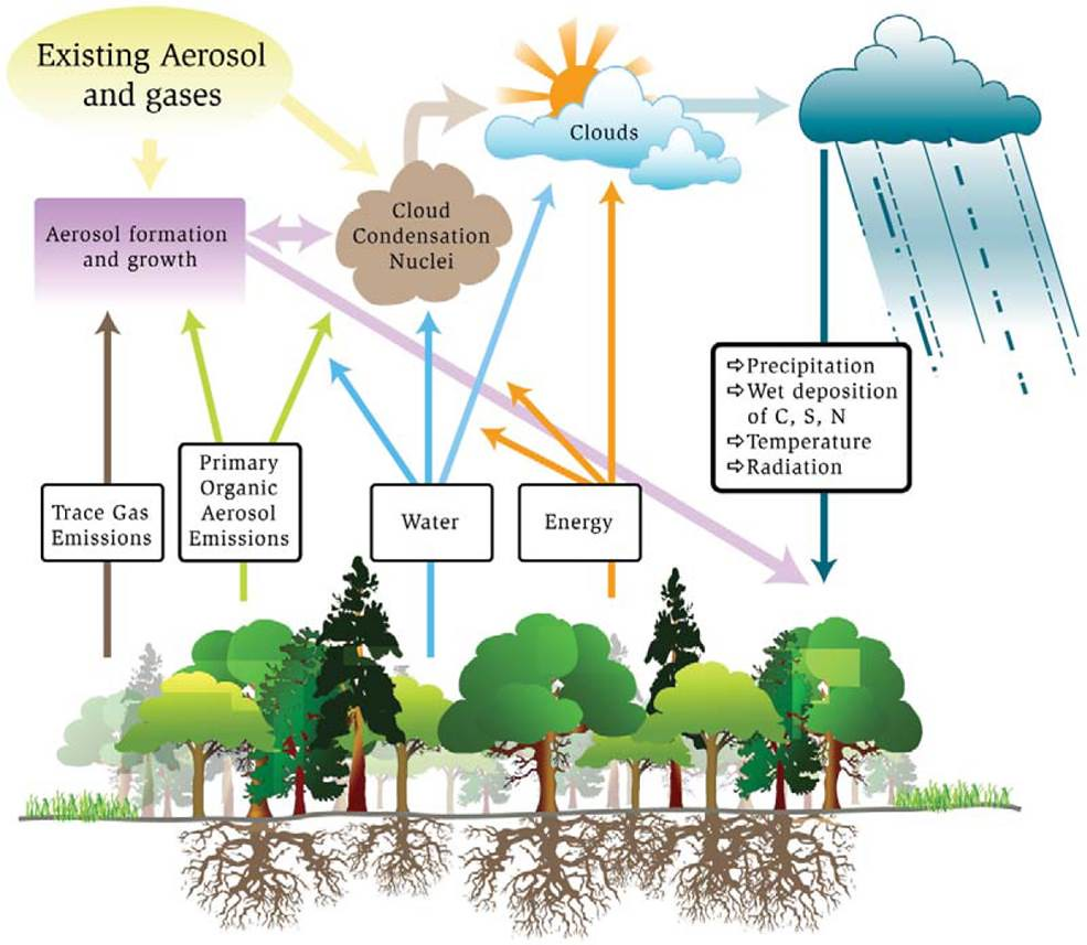 Hydrologic cycle poster does terrestrial ecosystem scienc flickr hydrologic cycle poster by arm climate research facility ccuart Gallery