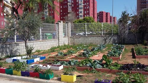 Huerta Ecológica Colegio Gloria Fuertes