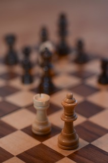 a queens point of view: checkmate the king | by tom_p