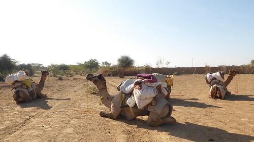 jaisalmer-jr 1- depart (1)