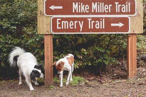 Mike Miller February-3514