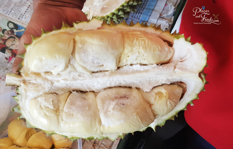 durian tawa flesh