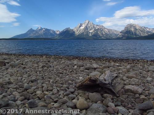 More views of the Teton across Jackson Lake from the Lakeshore Trail, Grand Teton National Park, Wyoming