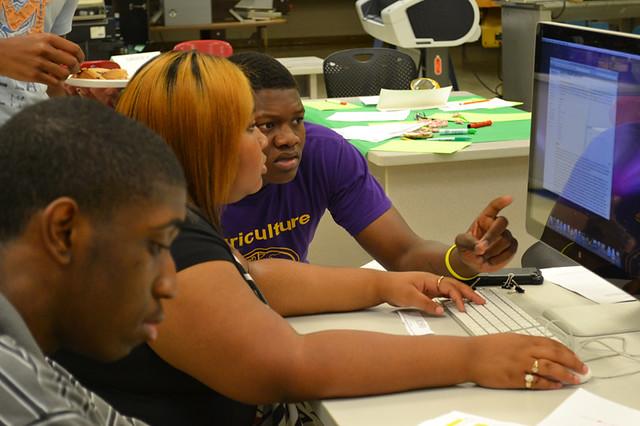 McComb: Summer Institute 2012