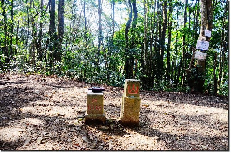 高台山三等三角點(#6286)及山字森林三角點 2