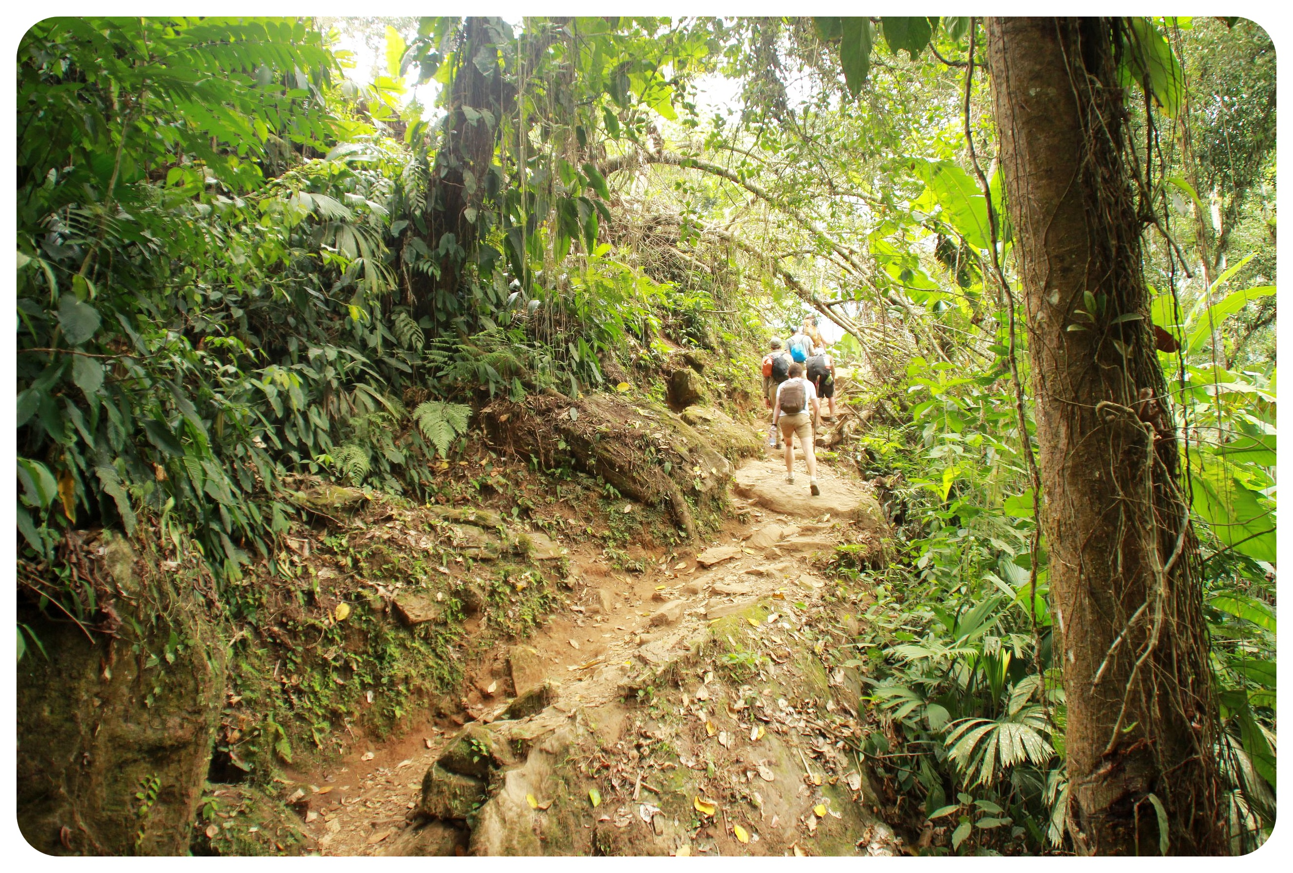 lost city trek colombia1
