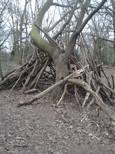 Hampstead Heath Scenes