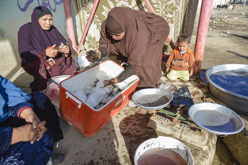 Women sell fish from a newly constructed marketplace in Fayoum, Egypt. Photo by Heba Al Begawi/WorldFish, 2014.