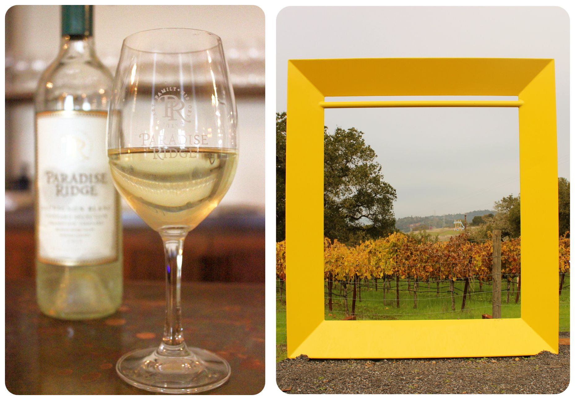 Santa Rosa Paradise Ridge Winery1