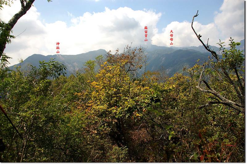朗吾呂山稜線西眺大母母~神趾山連稜 1-1
