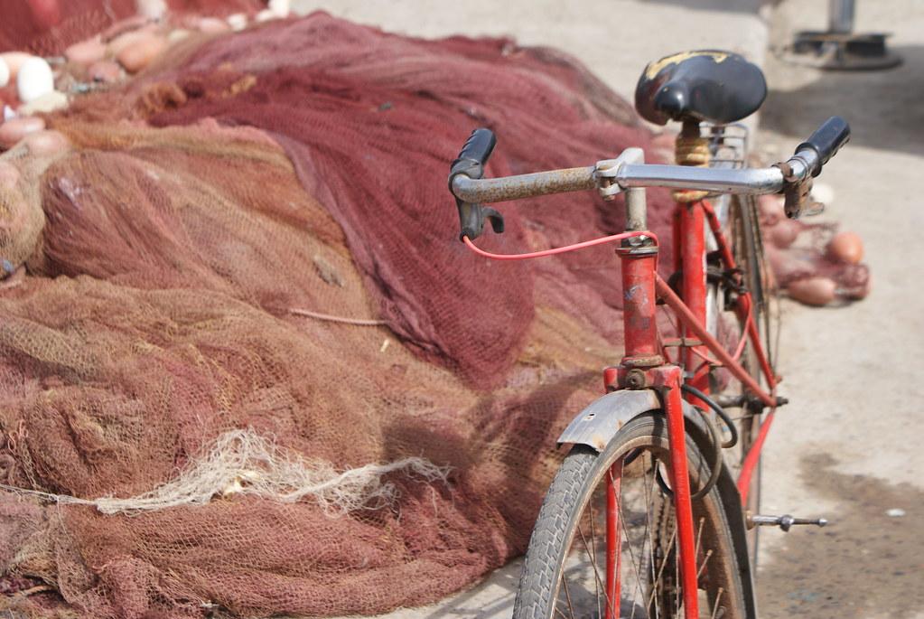 Si vous voulez sortir de la Médina, un vélo peut être pratique sinon vous ferez tout à pied sans problème.