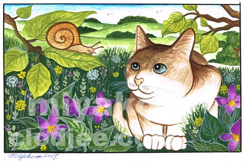 Cat and snail in spring