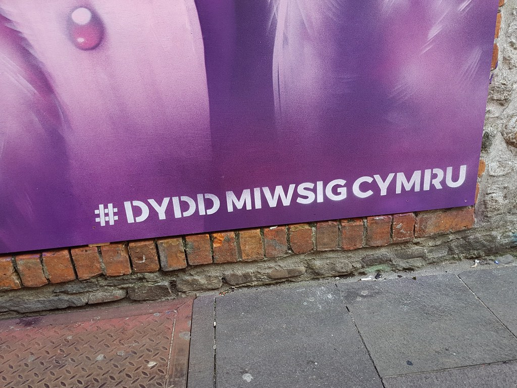 Welsh Language Music Day by Rmer