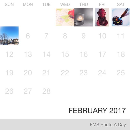 FMS Photo A Day February 2017