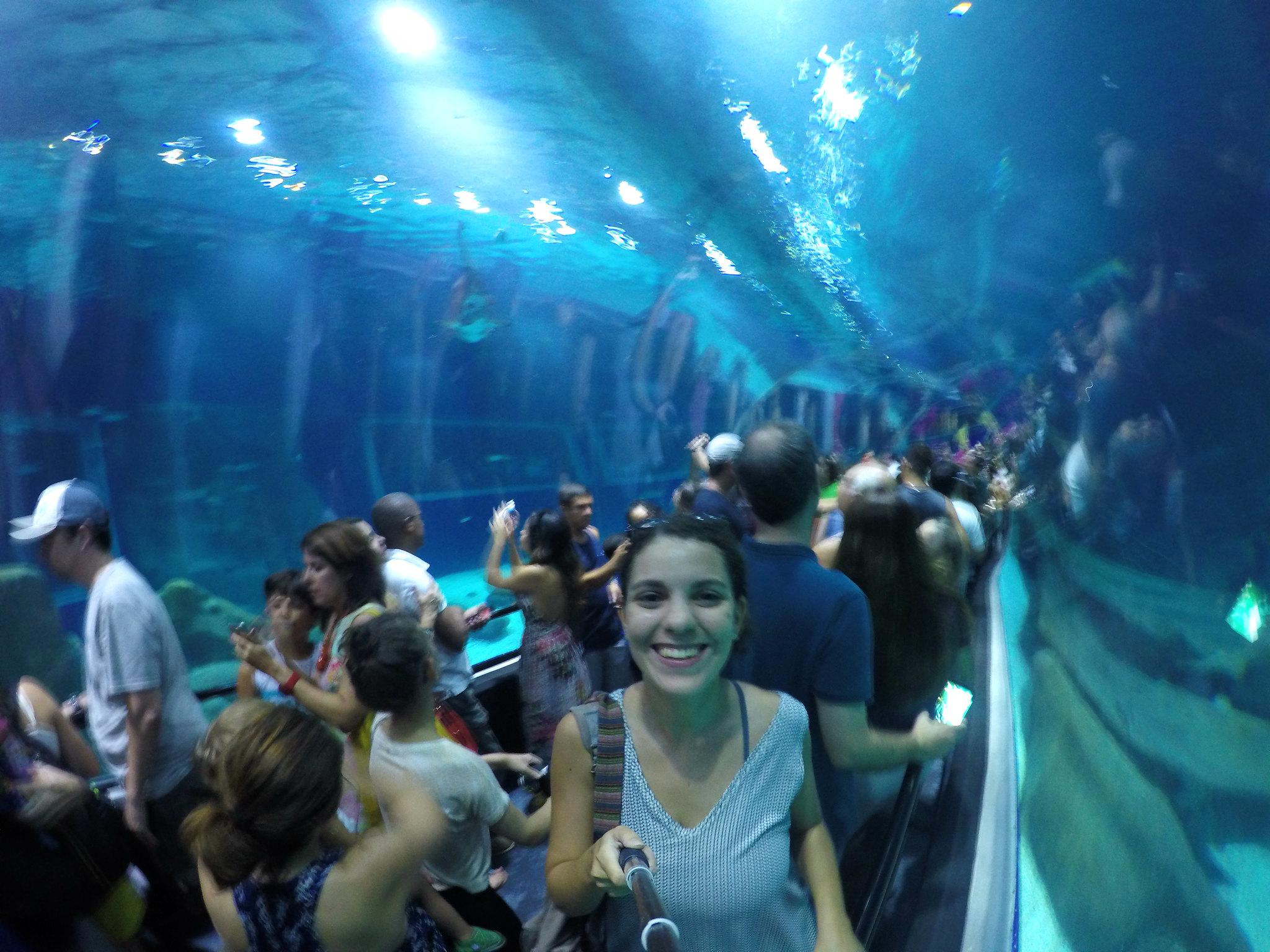 aquario2v2