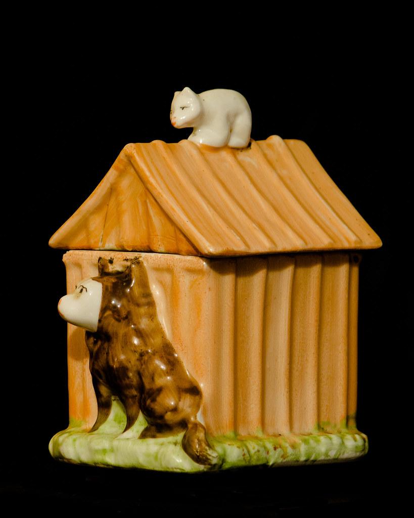 Le chat pot du chien. 33202314376_4e7daa7417_b
