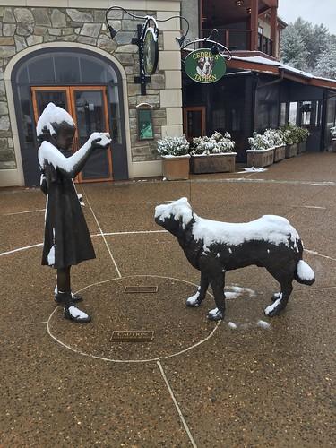 Biltmore Antler Village snow