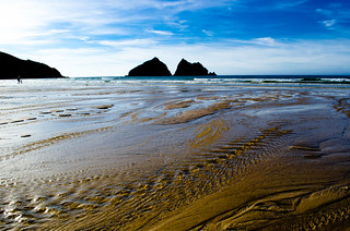 Holywell Bay Cornwall Dog Friendly