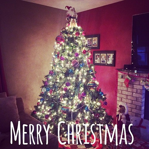 Merry Christmas! | by Our Family Nest