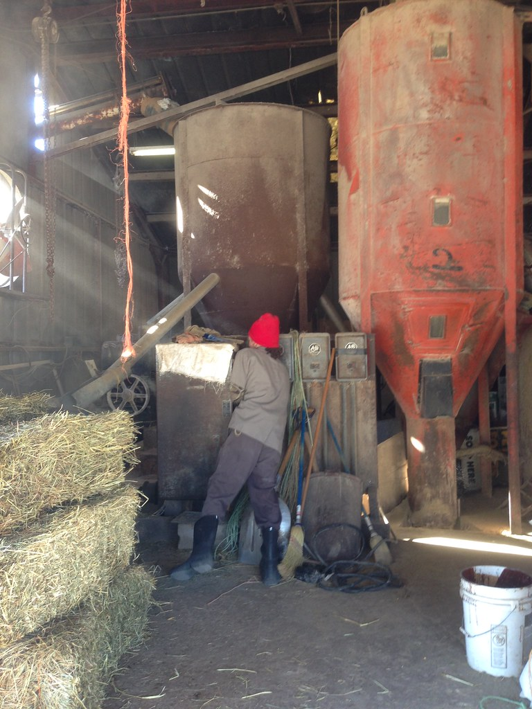 Harvest feed mill harvest al