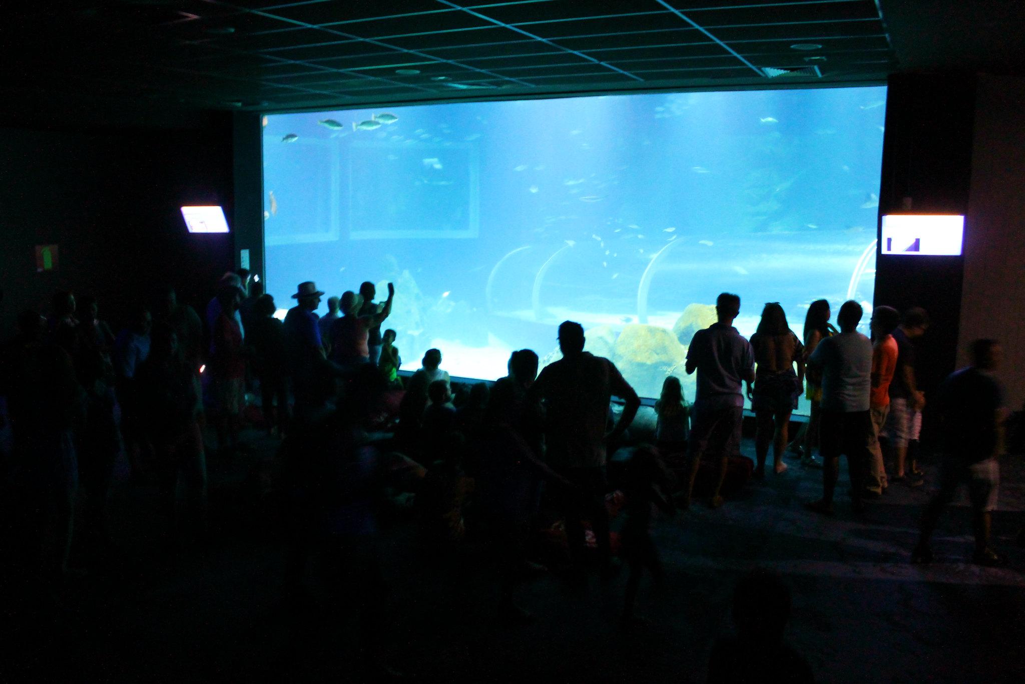 aquario14v2