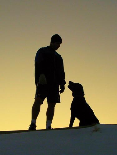 Best Buddies Dog Training Bury St Edmunds