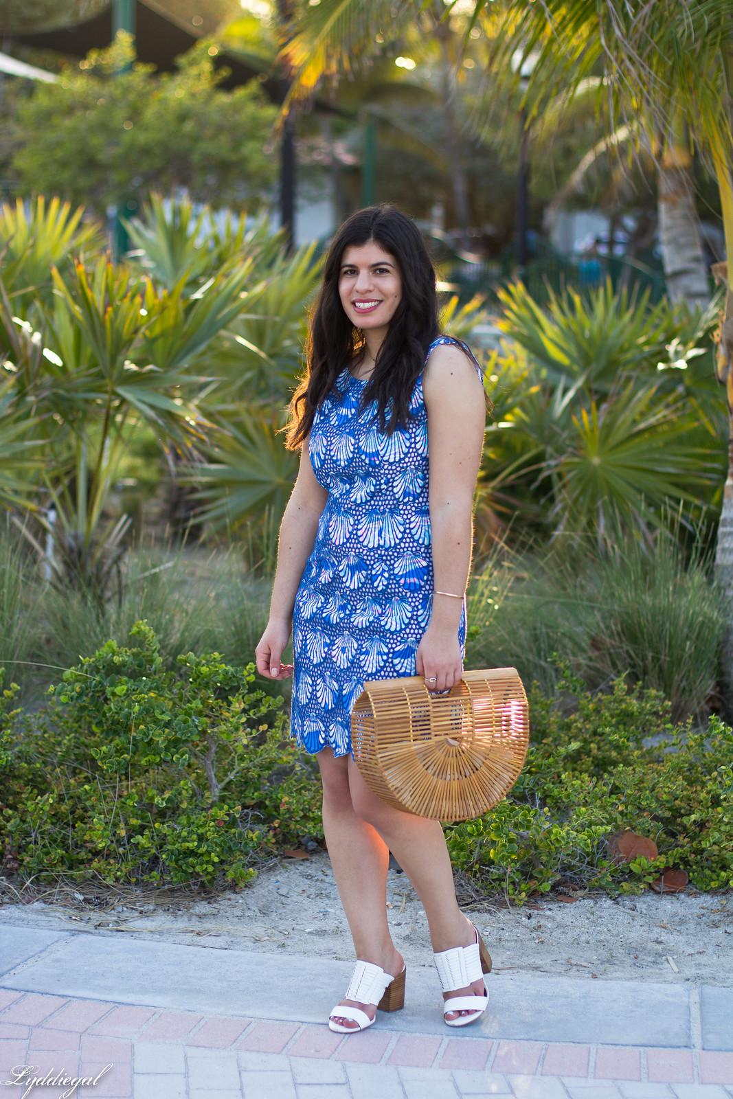 Lilly Pulitzer eyelet lace shell dress, bamboo bag, mules-3.jpg