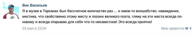 Отзыв посетителя о Тарханах, Вик Васильев