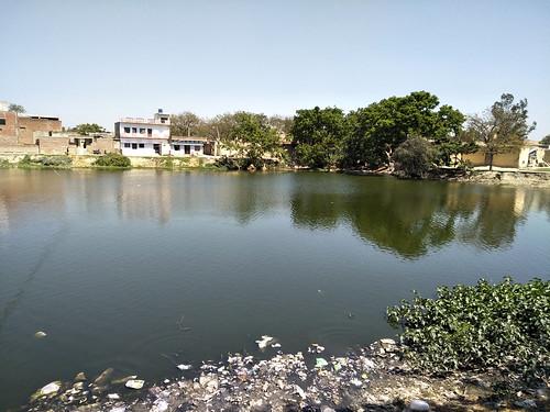 इन तालाबों की वजह से गाँव का भूजल स्तर 15 फीट है