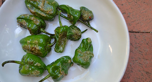 Padron-Peppers-Recipe | by Farm Fresh To You -