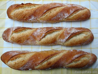 Four Hour Parisian Daily Baguettes, an easy French bread recipe (2) - FarmgirlFare.com | by Farmgirl Susan