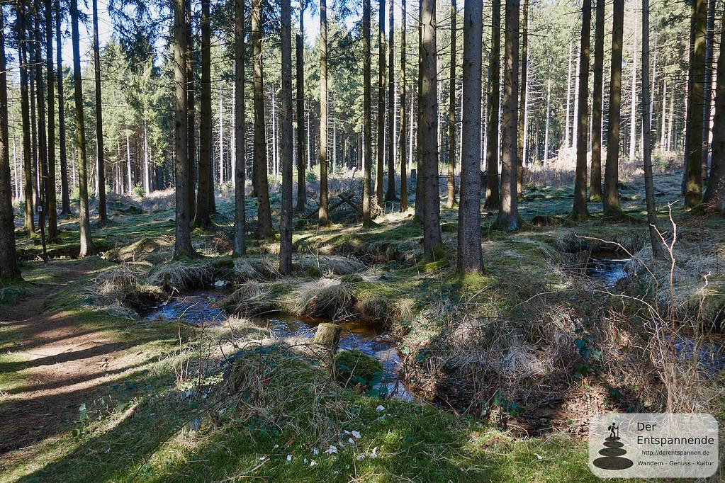 Quellbach auf dem Trauntal-Höhenweg