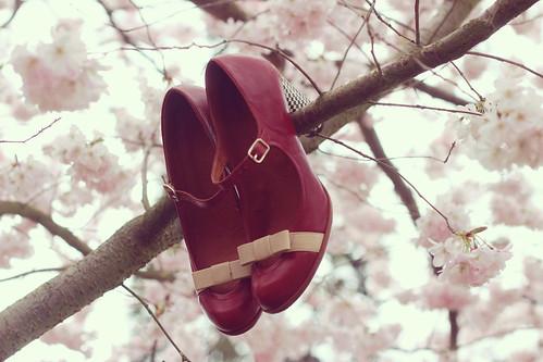 Spring time (1)