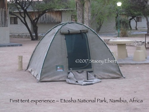 first tent experience, Etosha. From Adventures in Camping