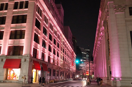 Nihonbashi Sakura light up 03
